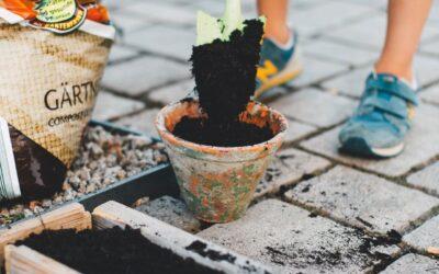 5 conseils pour jardiner sans se blesser